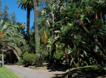 Sanremo (IM) – Giardini di Villa Zirio