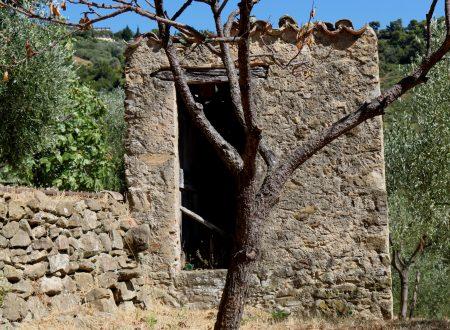 Vallebona (IM): un rustico a monte del paese